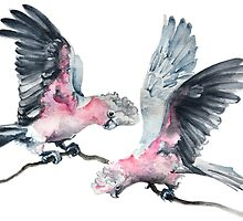 What a Pair of Galahs! by Denise Faulkner