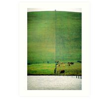 Cows on the Hedland Art Print