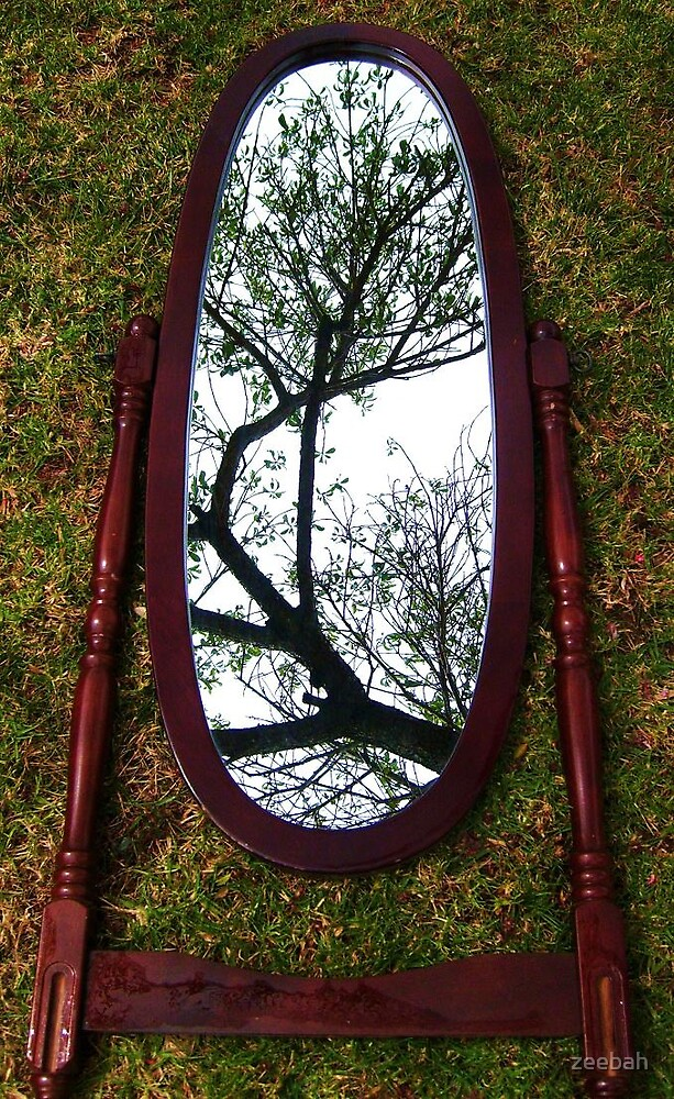 mirror mirror on the ground, to which tree branch will astound by zeebah