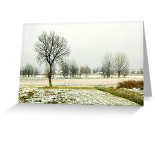Winter bareness Greeting Card
