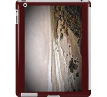 Skullcoast iPad Case/Skin