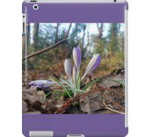 Purple Patch iPad Case/Skin