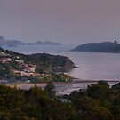 A Morning at Roy's in Paihia by Larry Lingard-Davis