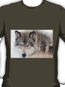 ...hypnotic wolf eyes... T-Shirt
