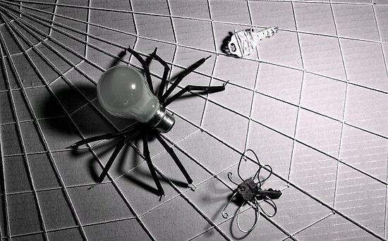 """Bulb Spider & Key Fly"" ~ IR by Pene Stevens"