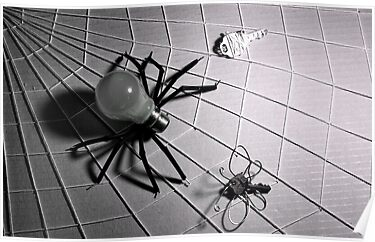 """Bulb Spider & Key Fly"" ~ IR by Pene Stevens"