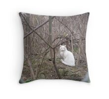 Whiteness in the Thicket Throw Pillow