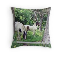 Priory Paddock Throw Pillow