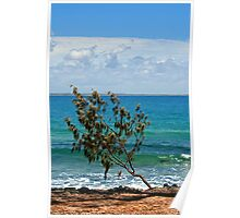 Noosa View Poster