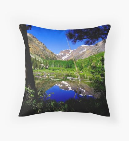 Beaver pond near Yosemite Throw Pillow