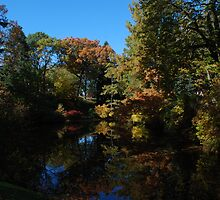 mt auburn cemetery - pond by colleenboston