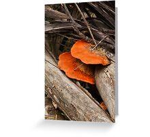 Speared Fungi Greeting Card