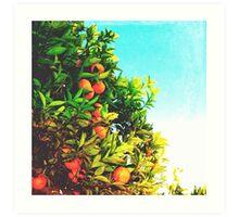 Ohh La La Oranges Art Print