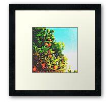 Ohh La La Oranges Framed Print