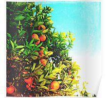 Ohh La La Oranges Poster
