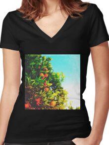 Ohh La La Oranges Women's Fitted V-Neck T-Shirt