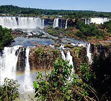 Iguazu Falls in Love by Gillian  Ford