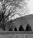 Holyrood,Arthur Seat,Edinburgh by DoreenPhillips