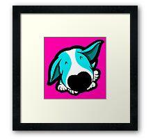Big Nose Bull Terrier Puppy Aqua Framed Print