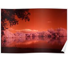 Lake in Infrared Poster
