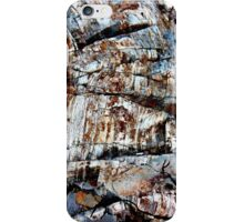 The Work of Ages iPhone Case/Skin