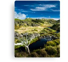 small river in rural valley Canvas Print