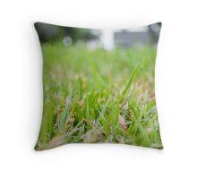 Inside garden Throw Pillow