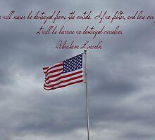 Freedom and Liberty! by kari