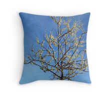 White Redbud Tree in May Throw Pillow