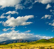 hills at catlins by peterwey