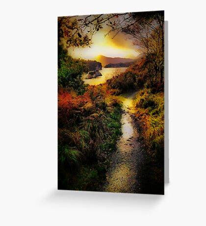 Killarney Lake Path Greeting Card