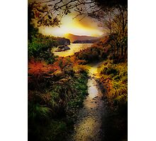 Killarney Lake Path Photographic Print