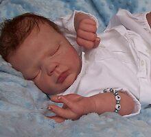 The Art of Reborn Baby Dolls by Cassie Peek