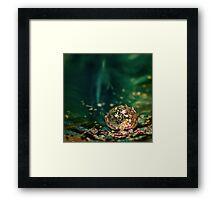Glitter Ball Framed Print