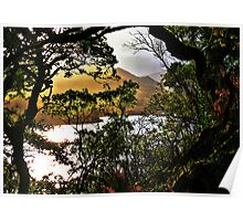 Killarney - Sunset Through The Trees Poster