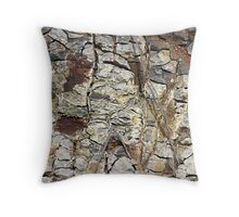 Dry Sand Hill Throw Pillow