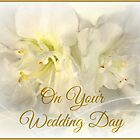 Greeting Card: Wedding, Bridal, Marriage,  by wallarooimages