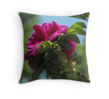 Layers of Fragrance Throw Pillow