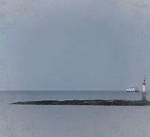 Frosti by Gail Bridger