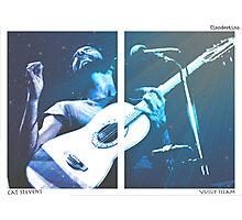 Cat Stevens / Yusuf Photographic Print
