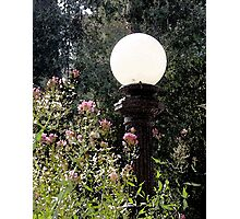 Lamppost Photographic Print