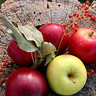 Apples on Stump by pixzlee