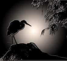 Egret Silhouette by Bonnie T.  Barry
