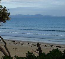 Waratah Bay veiw by nikki newman