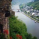 THE TOWN OF COCHEM GERMANY by DIANEPEAREN