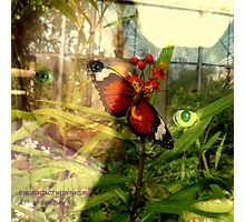 EYE CONTACT WITH NATURE Photographic Print