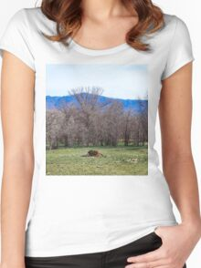 Dead Cow Women's Fitted Scoop T-Shirt