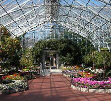 Eden Park Conservatory by noffi