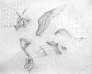 """Early pencil work - """"Break Out"""" by louisegreen"""