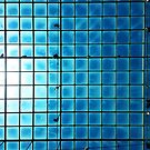 Glass Roof at NGV Melbourne by jezkemp